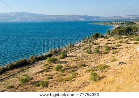 East Coast Of The Sea Of Galilee