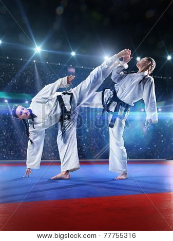 Two professional female karate fighters are fighting on the grand arena poster