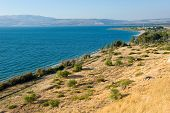 The east coast of the Sea of Galilee in Israel poster