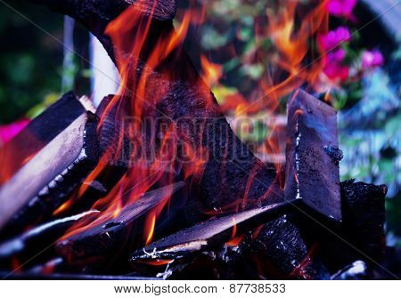 dry firewood burns at the stake