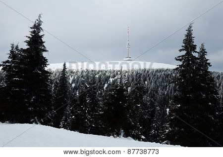 Czech mountain - Praded