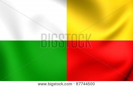 Flag Of Plzen, Czech Republic.