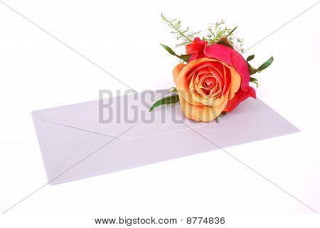 Red rose on envelop