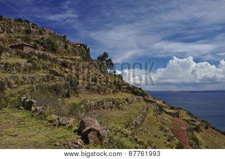Island Terraces, Lake Titicaca