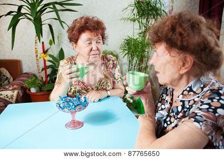Two seniors drinks tea. Old woman talking. Friendship elderly