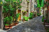 typical Italian street in a small provincial town of Tuscan Italy Europe poster