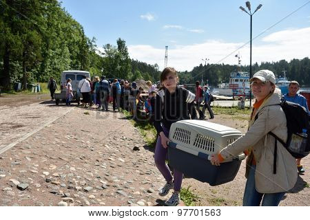 VALAAM ISLAND, RUSSIA - JULY 29, 2015: People carrying the cage with Ladoga ringed seal. Animals were cured in the Center of study and conservation of marine mammals and released into the lake Ladoga