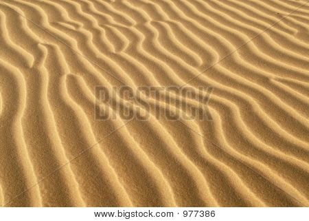 Ridges Of Sand Formed In Sand Dune