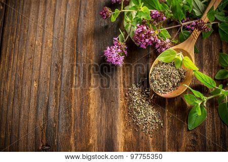 Dried Oregano In A Wooden Spoon And Twigs Of Fresh Green  With Flowers