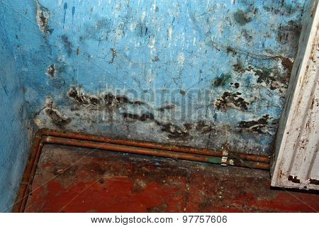 Dangerous mold fungus on the wall in a room near a heater poster
