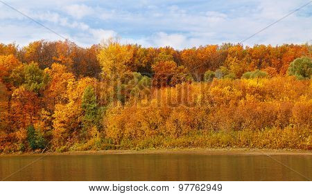?utumn Forest On The Bank Of The River And Its Reflection In The Water
