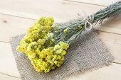 Dwarf everlast flowers bouquet and napkin on light wooden table, selective focus poster