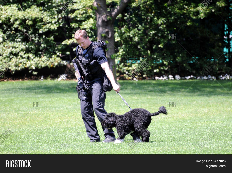 WASHINGTON - April 24 Image & Photo (Free Trial) | Bigstock