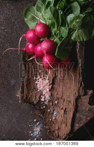 Fresh organic ripe young radish bundle with leaves and pink salt on wooden bark over dark metal texture background. Top view with space