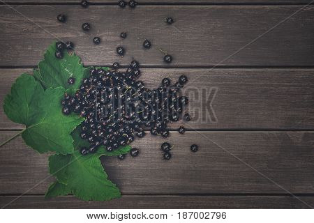 Fresh black currants on rustic wood background. Natural organic berries with green leaves scattered on weathered grey wooden table, dark filter
