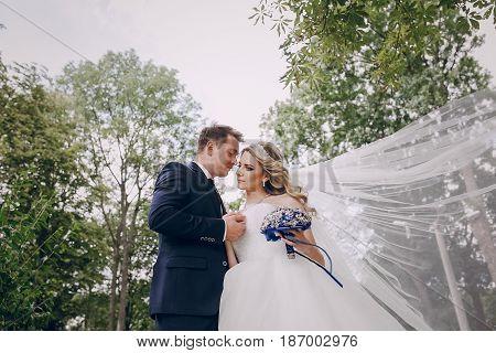 Bridal veil wedding couple hugs kisses outdoors