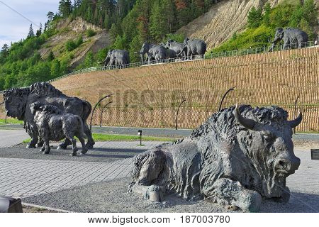 Editorial.Khanty-Mansiysk Yugra Russia August 12 2012 Archeopark Samarovo town The sculptural composition Primitive bison with calf