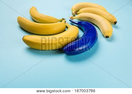 Close Up Of Fresh Yellow And Blue Bananas Isolated On Blue, Ripe Bananas