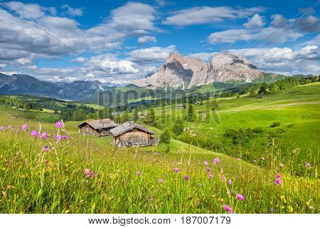 Alpe Di Siusi, South Tyrol, Italy