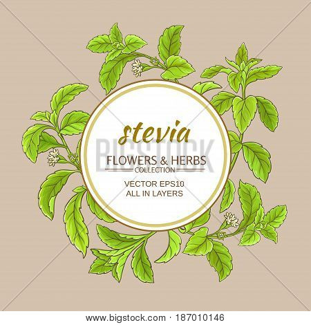 stevia branches vector frame on color background