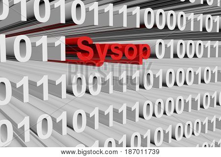 Sysop in the form of binary code, 3D illustration