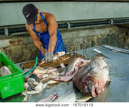 PUNTA DEL ESTE - URUGUAY, MARCH 3, 2017: Fisherman, wearing a steel mesh safety glove, cleans fish for sale at dockside of the popular resort city on the Atlantic coast.