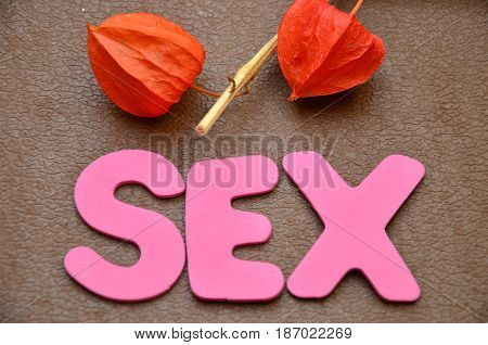 word sex on a  abstract colorful ,background