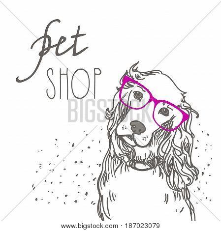 Pet shop. Dog vector illustration Spaniel dog