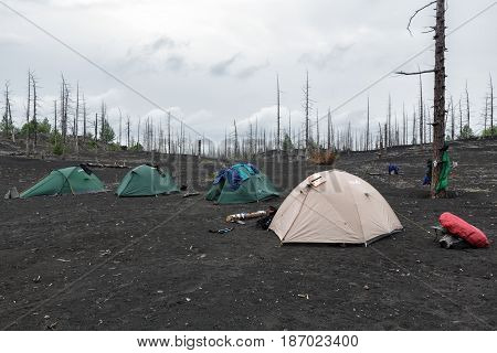 KAMCHATKA PENINSULA RUSSIA - June 25 2014: Tourist tents standing in Dead Wood on volcanic slag ash eruptions Tolbachik Volcano - consequence of catastrophic eruption of volcano during on 1975-1976