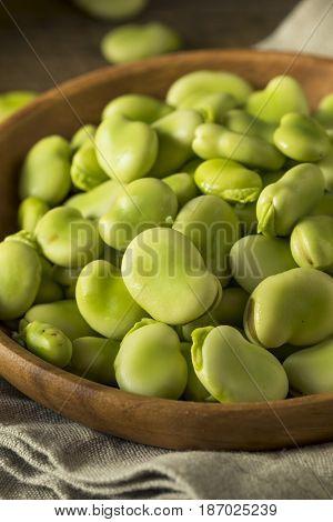 Raw Organic Fresh Green Fava Beans