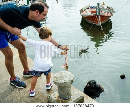 PUNTA DEL ESTE - URUGUAY, MARCH 3, 2017: Father and son feed fish to a sea lion at the fishing dock of the popular resort city on the Atlantic coast.