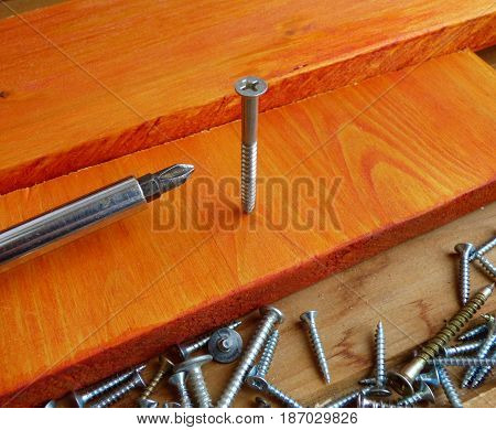 Big screw ans screwdriver on wood surface. With lot of fallen screws around. Home improvement tools and fasteners. Selected focus on central screw.