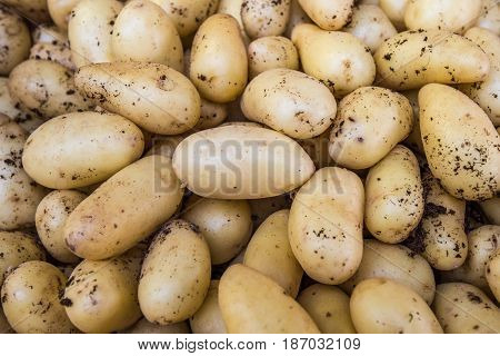 Highly detailed image of organic potatoes at the food market