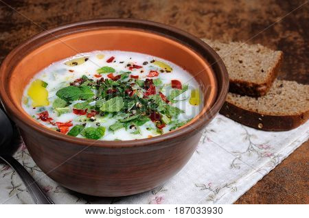 Refreshing сold summer soup the rice mint and yoghurt spices. Horizontal shot.
