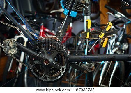 Master Bike Repairs In The Workshop 4