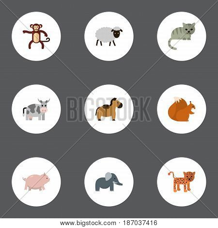 Flat Piggy, Kine, Chimpanzee And Other Vector Elements. Set Of Mammal Flat Symbols Also Includes Gorilla, Hog, Nut Objects.