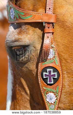 crystal cross on a brown horse's bridle