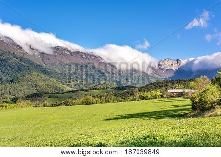 French countryside. Green meadow and mountains on a sunny morning in the park of Vercors, France