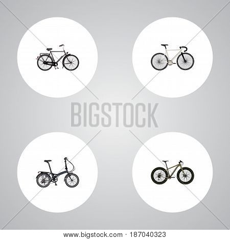 Realistic Road Velocity, Bmx, Training Vehicle And Other Vector Elements. Set Of Bicycle Realistic Symbols Also Includes Dutch, Bike, Extreme Objects.