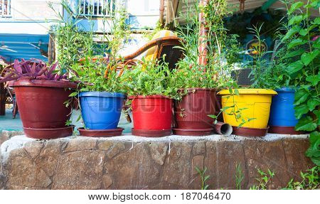 Bali Island Crete Greece - June 24 2016: View on the flowers in pots in cafe in the village Bali that is located on the coast of island Crete on early morning.