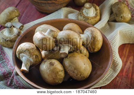 Fresh Royal Mushrooms