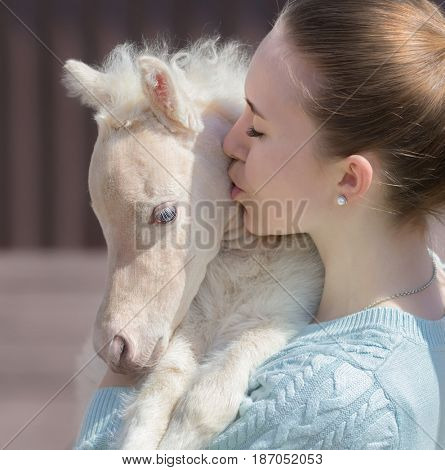 Young cute woman kissing beautiful miniature cream foal. Unique breed  is American Miniature Horse. Foal is one month of birth. Concept about animals and people.