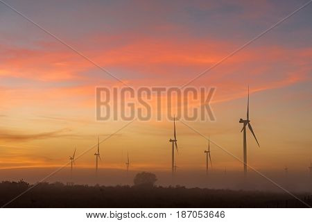 Silhouettes of wind turbines in thick fog at dawn near Hopefield a town in the Western Cape Province