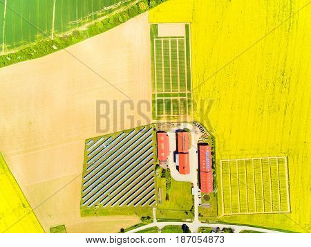 Aerial view to green wheat and rapeseed fields and modern farm with organic produce. Agricultural landscape from above.