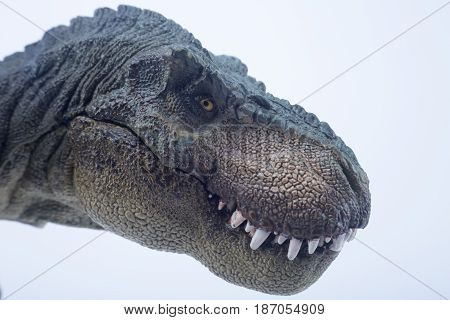 Macro Head Shot Of Green Dinosaur Tyrannosaurus Rex With Close Mouth In Staring Position - White Bac