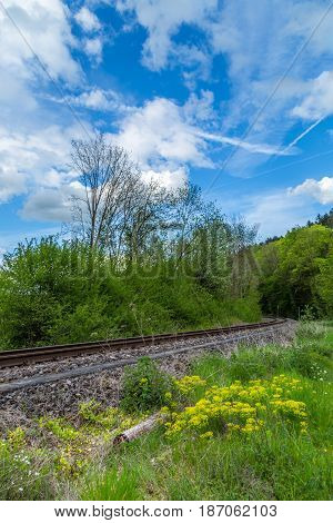 Scenic Landscape With Blue Puffy Clouds Sky And Train Rail Track Green Trees Crossing A Forest