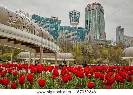 The View of downtown in Niagara Falls city, Ontario, Canada