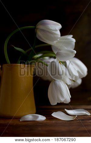 Romantic white tulips in a yellow vase