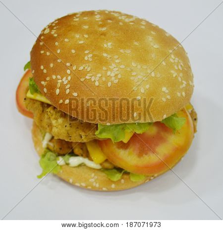 Tasty Chicken Burger on plain background - Can be used for websites, magazine, brochures or flyers