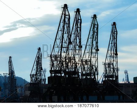 Silhouettes of cargo cranes in the sea port. Black silhouettes of tower cranes against of the blue sky background